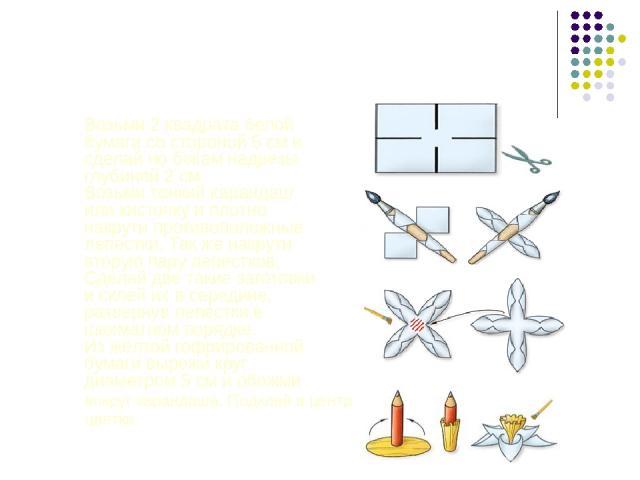 Нарциссы Возьми 2 квадрата белой бумаги со стороной 5 см и сделай по бокам надрезы глубиной 2 см. Возьми тонкий карандаш или кисточку и плотно накрути противоположные лепестки. Так же накрути вторую пару лепестков. Сделай две такие заготовки и склей…