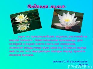 Водяная лилия- одно из прекраснейших водных растений на нашей планете - блистате