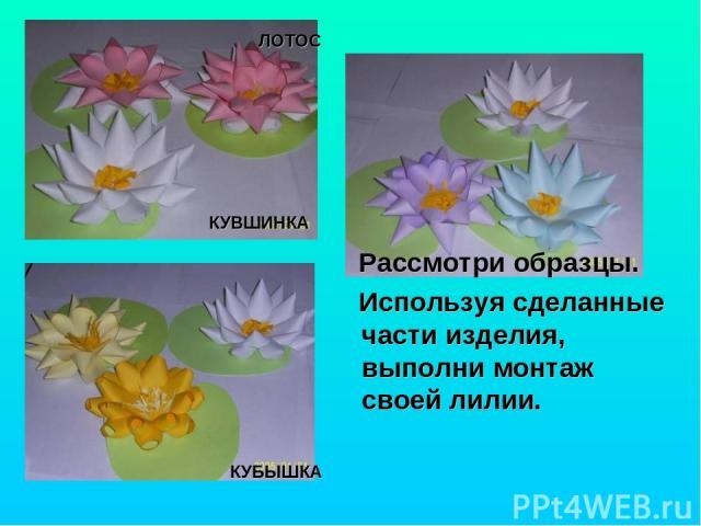 КУБЫШКА КУВШИНКА ЛОТОС Рассмотри образцы. Используя сделанные части изделия, выполни монтаж своей лилии.