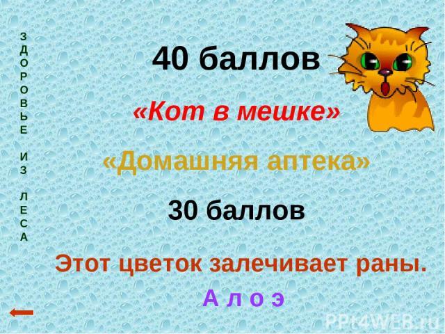 З Д О Р О В Ь Е И З Л Е С А 40 баллов «Кот в мешке» «Домашняя аптека» 30 баллов Этот цветок залечивает раны. А л о э