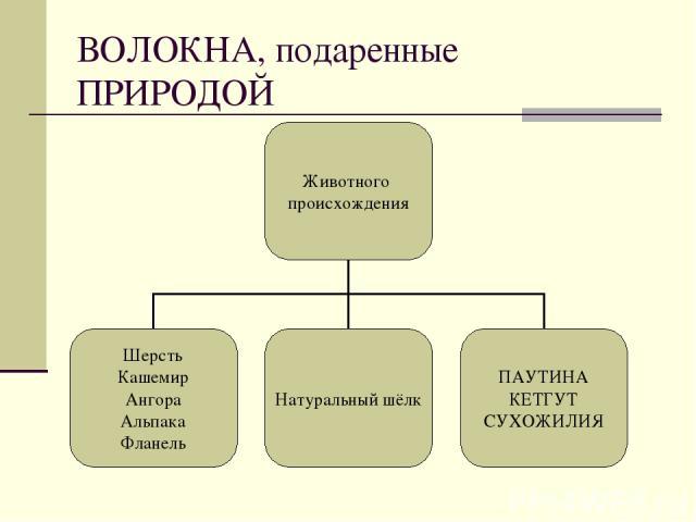 ВОЛОКНА, подаренные ПРИРОДОЙ