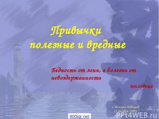 г. Нижний Новгород 13 декабря 2008г Привычки полезные и вредные Бедность от лени