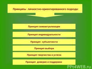 Принцип самоактуализации Принцип индивидуальности Принцип субъектности Принцип в