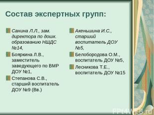 Состав экспертных групп: Санина Л.Л., зам. директора по дошк. образованию НШДС №