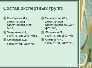 Состав экспертных групп: Епифанова И.К., заместитель заведующего ДОУ №12, Залука