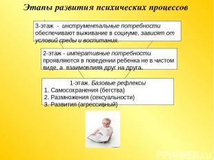 Этапы развития психических процессов