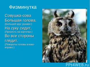 Совушка-сова Большая голова. (Большой круг руками.) На суку сидит, (Присесть на