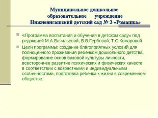 Муниципальное дошкольное образовательное учреждение Нижнеингашский детский сад №