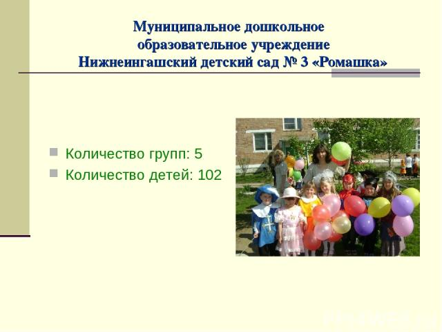 Муниципальное дошкольное образовательное учреждение Нижнеингашский детский сад № 3 «Ромашка» Количество групп: 5 Количество детей: 102