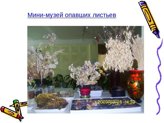 Мини-музей опавших листьев