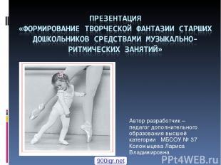 Автор разработчик – педагог дополнительного образования высшей категории МБСОУ №
