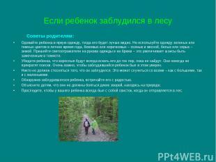 Если ребенок заблудился в лесу Советы родителям: Одевайте ребенка в яркую одежду