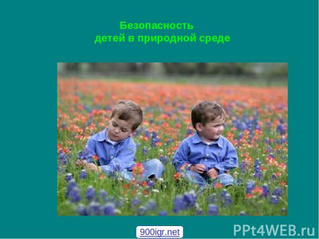 Безопасность детей в природной среде 900igr.net