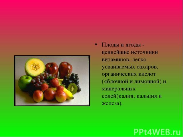 Плоды и ягоды - ценнейшие источники витаминов, легко усваиваемых сахаров, органических кислот (яблочной и лимонной) и минеральных солей(калия, кальция и железа).