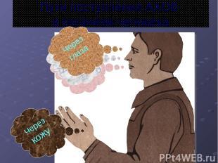 Пути поступления АХОВ в организм человека Через кожу Через рот Через нос Через г