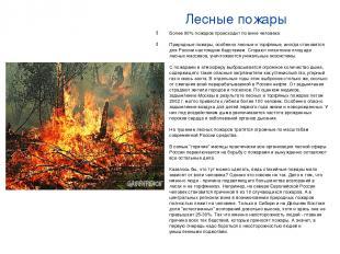 Лесные пожары Более 90% пожаров происходит по вине человека Природные пожары, ос