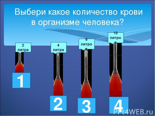 Выбери какое количество крови в организме человека? 2 литра 4 литра 6 литров 10 литров 1 2 3 4