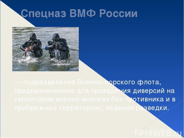 Спецназ ВМФ России — подразделения Военно-морского флота, предназначенные для проведения диверсий на территории военно-морских баз противника и в прибрежных территориях, ведения разведки.
