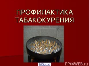 ПРОФИЛАКТИКА ТАБАКОКУРЕНИЯ 900igr.net
