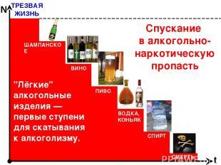 """Спускание в алкогольно-наркотическую пропасть ТРЕЗВАЯ ЖИЗНЬ t N """"Лёгкие"""" алкогол"""
