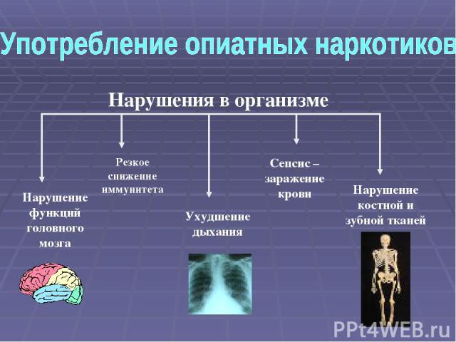 Нарушение функций головного мозга Нарушение костной и зубной тканей Ухудшение дыхания Резкое снижение иммунитета Сепсис – заражение крови Нарушения в организме