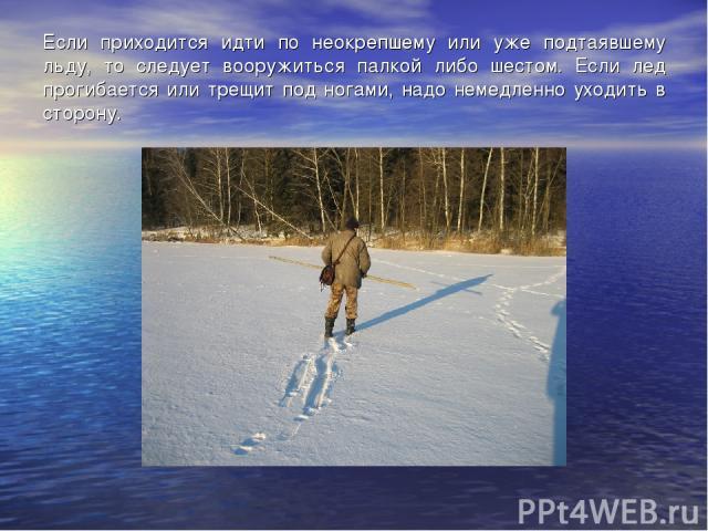 Если приходится идти по неокрепшему или уже подтаявшему льду, то следует вооружиться палкой либо шестом. Если лед прогибается или трещит под ногами, надо немедленно уходить в сторону.
