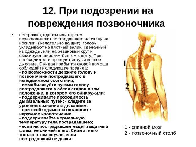 12. При подозрении на повреждения позвоночника осторожно, вдвоем или втроем, перекладывают пострадавшего на спину на носилки, (желательно на щит), голову укладывают на плотный валик, сделанный из одежды, или на резиновый круг и фиксируют широким бин…