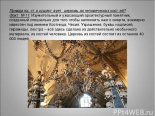 Правда ли, что существует церковь из человеческих костей? Факт №11: Изумительный