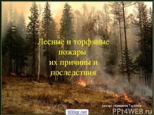 Лесные и торфяные пожары их причины и последствия Автор: учащиеся 7 класса 900ig