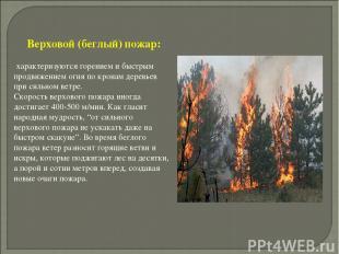 Верховой (беглый) пожар: характеризуются горением и быстрым продвижением огня по
