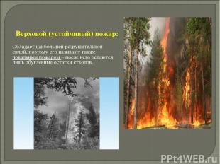 Верховой (устойчивый) пожар: Обладает наибольшей разрушительной силой, поэтому е