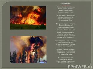 Лесной пожар Сергей Газин Смешалось всё: огонь и люди, И дым, и пепел, и земля..