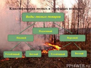 Подземный Классификация лесных и торфяных пожаров: Виды лесных пожаров Низовой В