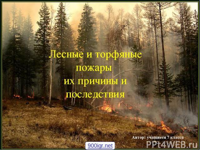 Лесные и торфяные пожары их причины и последствия Автор: учащиеся 7 класса 900igr.net