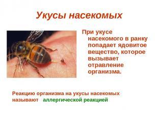 Укусы насекомых При укусе насекомого в ранку попадает ядовитое вещество, которое