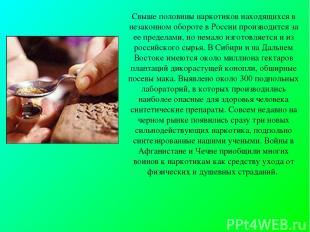 Свыше половины наркотиков находящихся в незаконном обороте в России производится