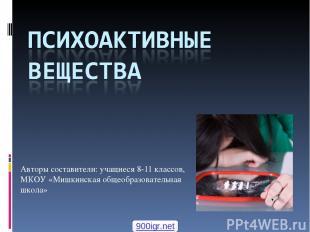 Авторы составители: учащиеся 8-11 классов, МКОУ «Мишкинская общеобразовательная