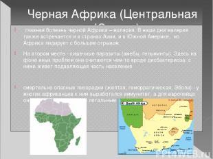 Черная Африка (Центральная и Южная) главная болезнь черной Африки – малярия. В