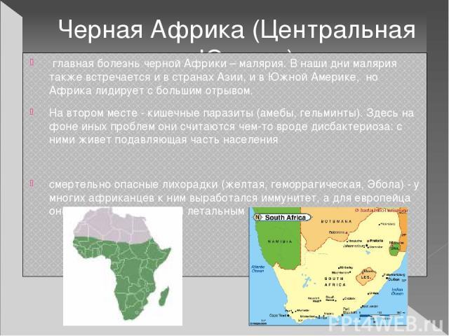 Черная Африка (Центральная и Южная) главная болезнь черной Африки – малярия. В наши дни малярия также встречается и в странах Азии, и в Южной Америке, но Африка лидирует с большим отрывом. На втором месте - кишечные паразиты (амебы, гельминты). Зде…