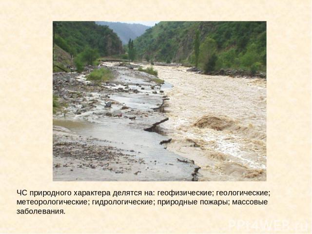 ЧС природного характера делятся на: геофизические; геологические; метеорологические; гидрологические; природные пожары; массовые заболевания.