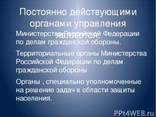 Постоянно действующими органами управления являются: Министерство Российской Фед