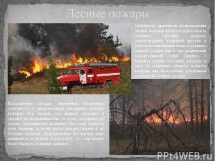 Лесные пожары Основными причинами возникновения лесных пожаров является деятельн