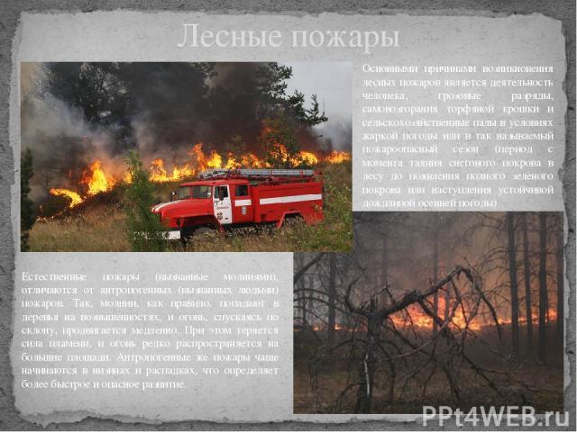 Лесные пожары Основными причинами возникновения лесных пожаров является деятельность человека, грозовые разряды, самовозгорания торфяной крошки и сельскохозяйственные палы в условиях жаркой погоды или в так называемый пожароопасный сезон (период с м…