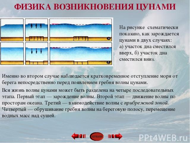 На рисунке схематически показано, как зарождается цунами в двух случаях: а) участок дна сместился вверх, б) участок дна сместился вниз. Именно во втором случае наблюдается кратковременное отступление моря от берега непосредственно перед появлением …