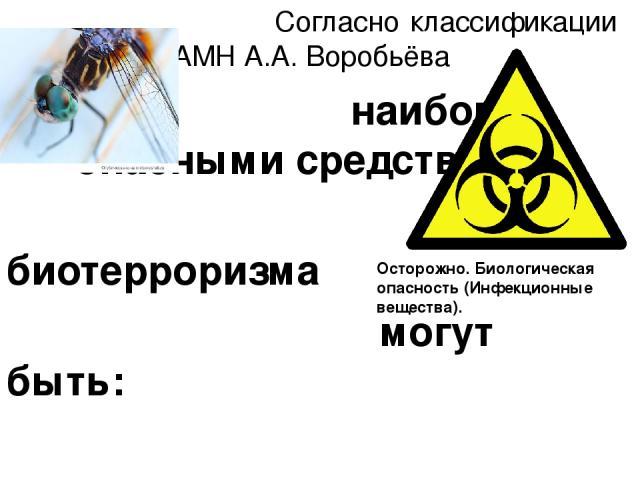Согласно классификации академика РАМН А.А. Воробьёва наиболее опасными средствами биотерроризма могут быть: вирус натуральной оспы, возбудители чумы, сибирской язвы, ботулизма (токсины), геморрагической лихорадки Марбург, туляремии, венесуэльского э…