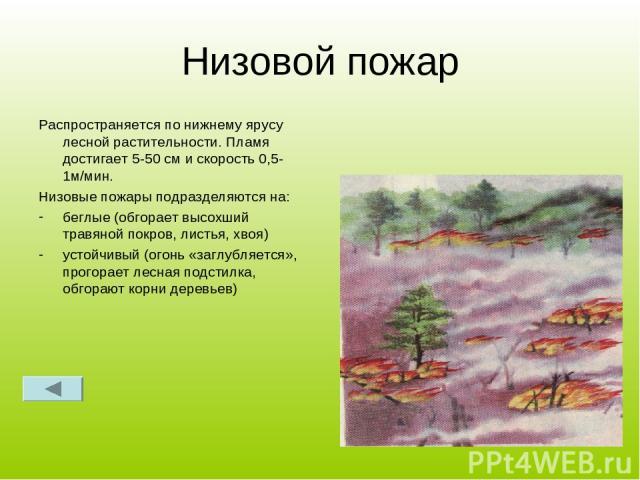 Низовой пожар Распространяется по нижнему ярусу лесной растительности. Пламя достигает 5-50 см и скорость 0,5-1м/мин. Низовые пожары подразделяются на: беглые (обгорает высохший травяной покров, листья, хвоя) устойчивый (огонь «заглубляется», прогор…