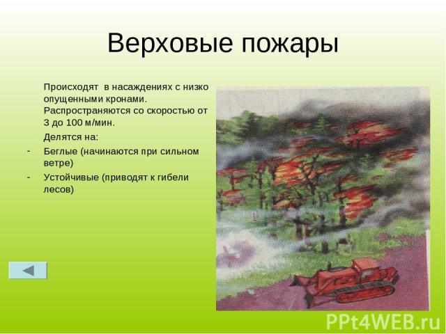 Верховые пожары Происходят в насаждениях с низко опущенными кронами. Распространяются со скоростью от 3 до 100 м/мин. Делятся на: Беглые (начинаются при сильном ветре) Устойчивые (приводят к гибели лесов)
