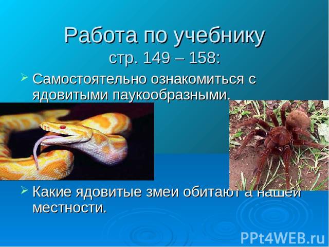 Работа по учебнику стр. 149 – 158: Самостоятельно ознакомиться с ядовитыми паукообразными. Какие ядовитые змеи обитают а нашей местности.