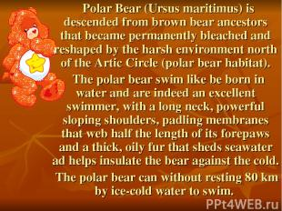 Polar Bear (Ursus maritimus) is descended from brown bear ancestors that became