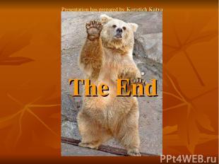 The End Presentation has prepared by Korotich Katya